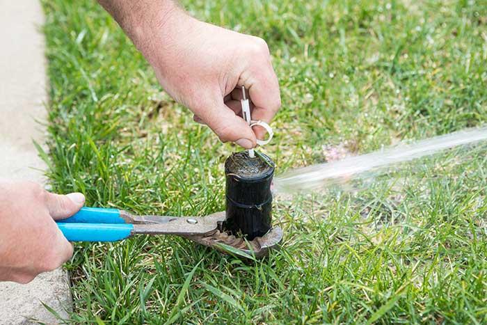 https://caryirrigationrepairs.com/wp-content/uploads/2020/04/sprinkler-repair.jpg